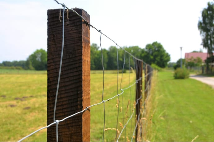 Stock Fence