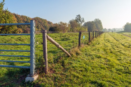 Installing Electric Fence Posts